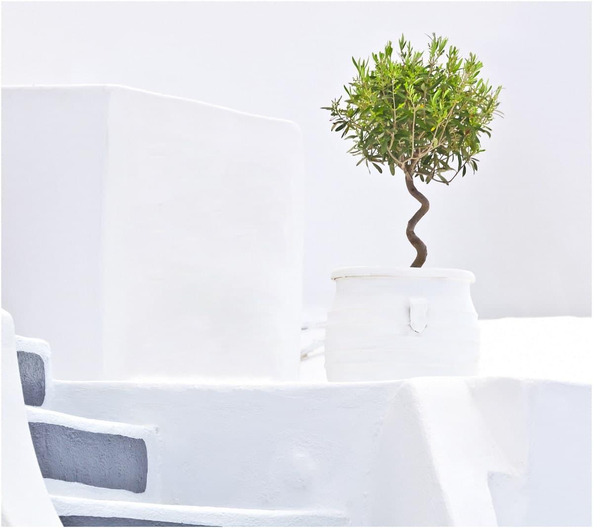 décoration salon moderne tunisie